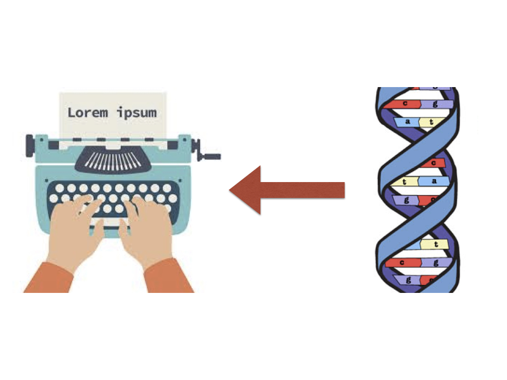 DNA to text icon